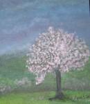 My chery blossom